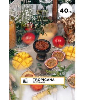 Табак Element Вода Tropicana 40гр