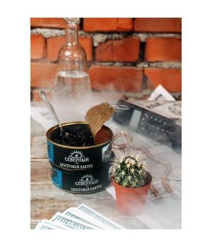 Табак Северный Центровой Кактус 100 гр