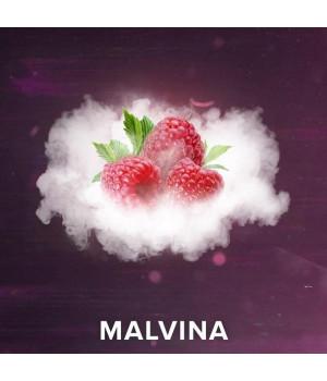 Табак 4:20 Dark Line Malvina (Малина) 100 гр