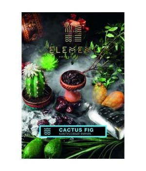 Табак Element Вода Cactus Fig (Кактус Инжир) 250гр