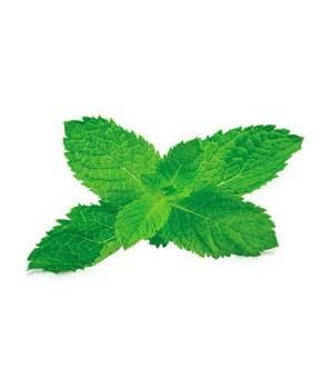 Табак Fumari Mint (Мята) 100гр